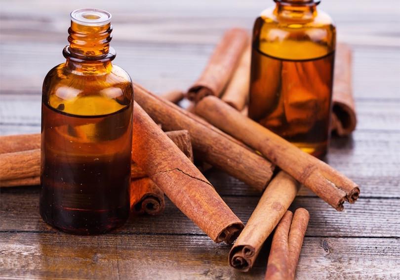 cinnamon-oil-kills-mosquito-larvae