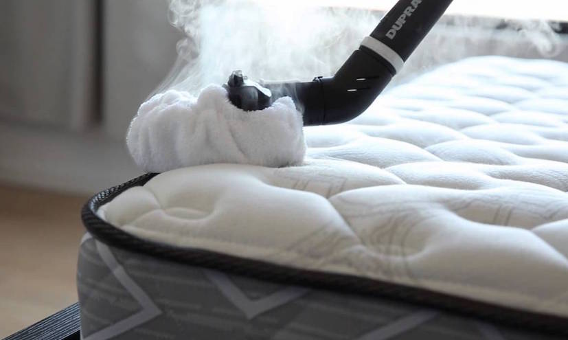 How To Kill Bed Bugs Off Mattress