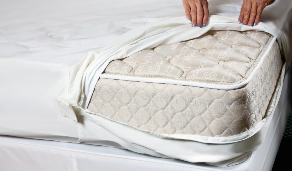 How to get rid of bed bugs in a mattress in 3 easy steps for How to cover a bed