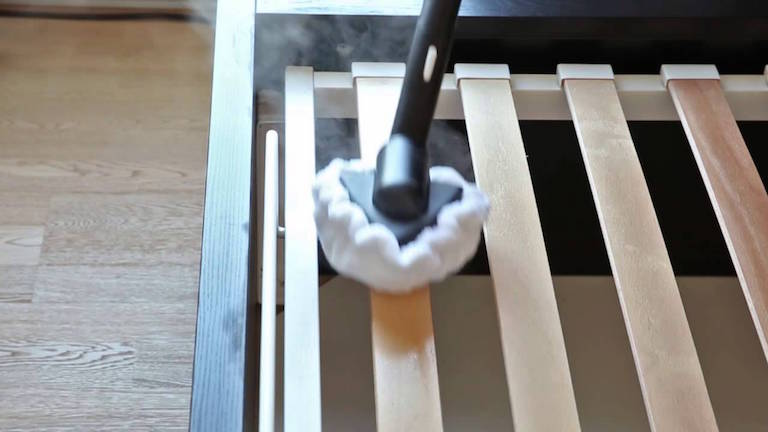 best way to get rid of bed bugs in a box spring