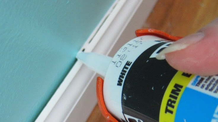 how-to-get-rid-of-bed-bugs-in-baseboards