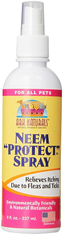 Neem Oil On Cats Fleas