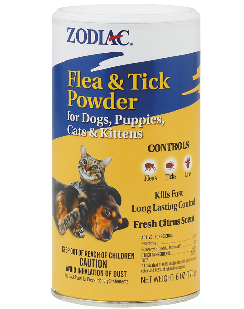 Best flea and tick prevention for outdoor cats