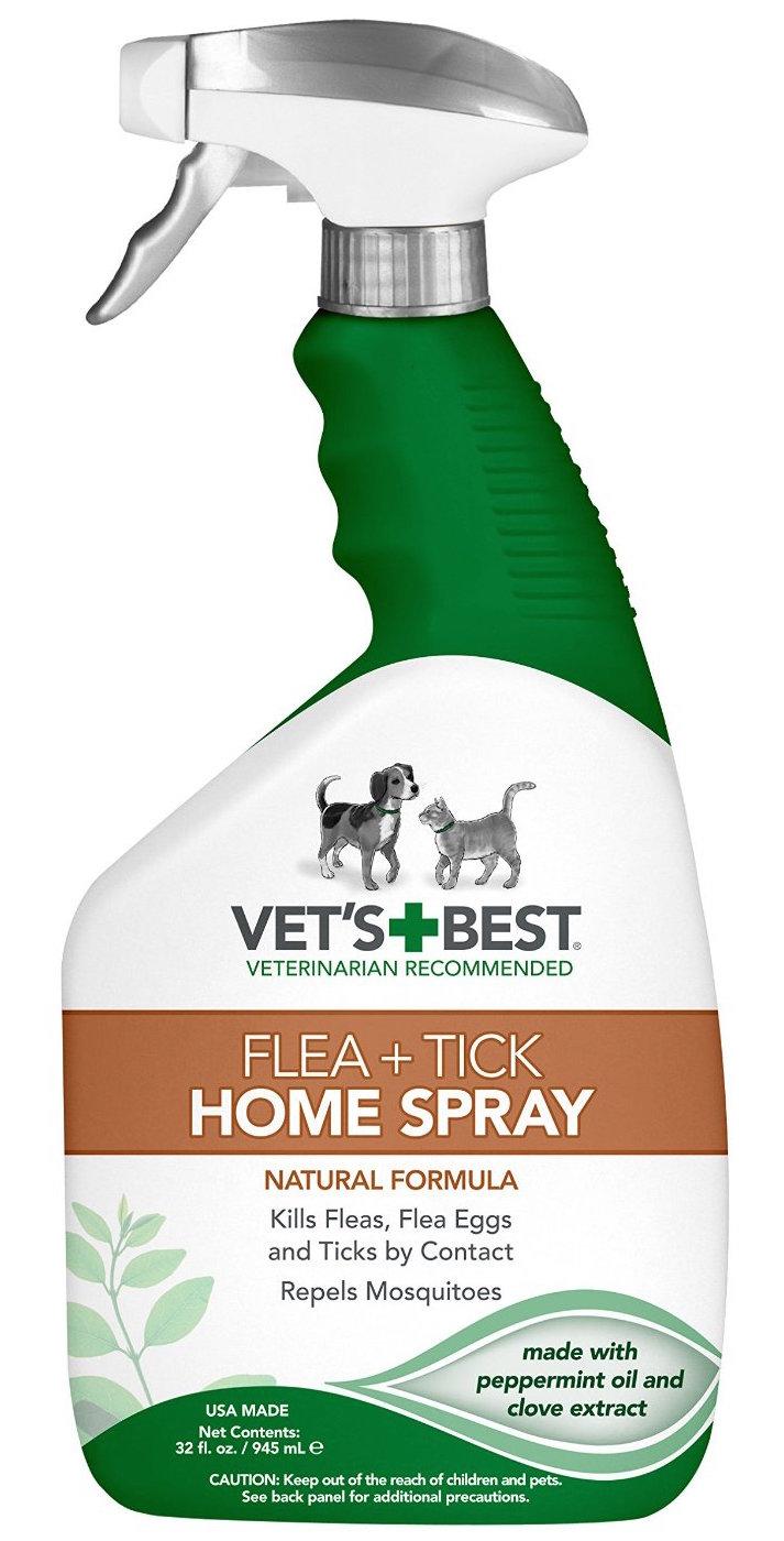 Natural Flea Spray. How To Kill Ticks