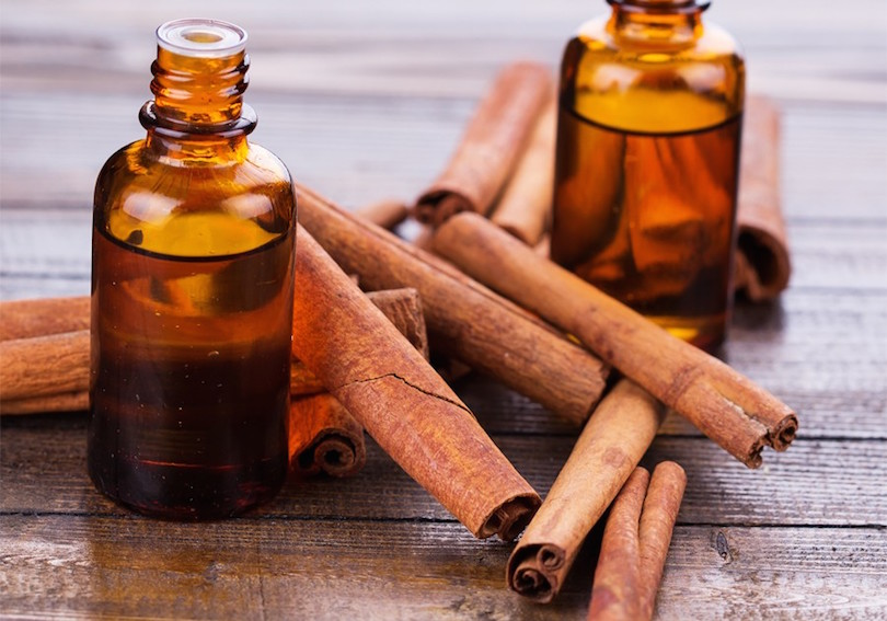 cinnamon-oil-kills-mosquito-larvae