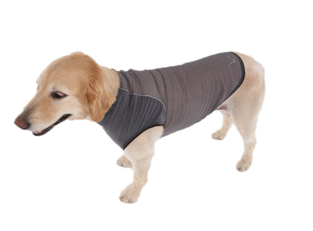 insect-repellent-clothing-for-dogs