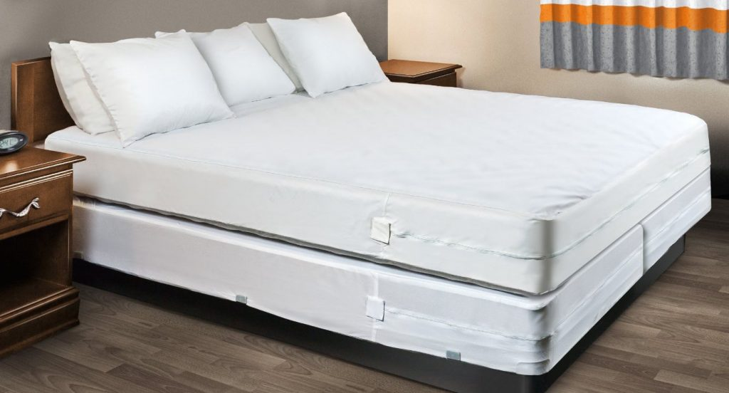 Get Rid of Bed Bugs in a Box Spring