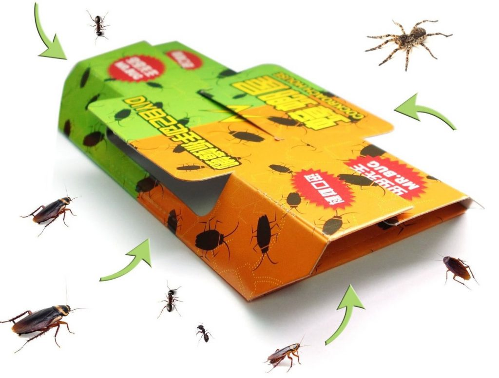 How To Get Rid Of Roaches And Mice Naturally