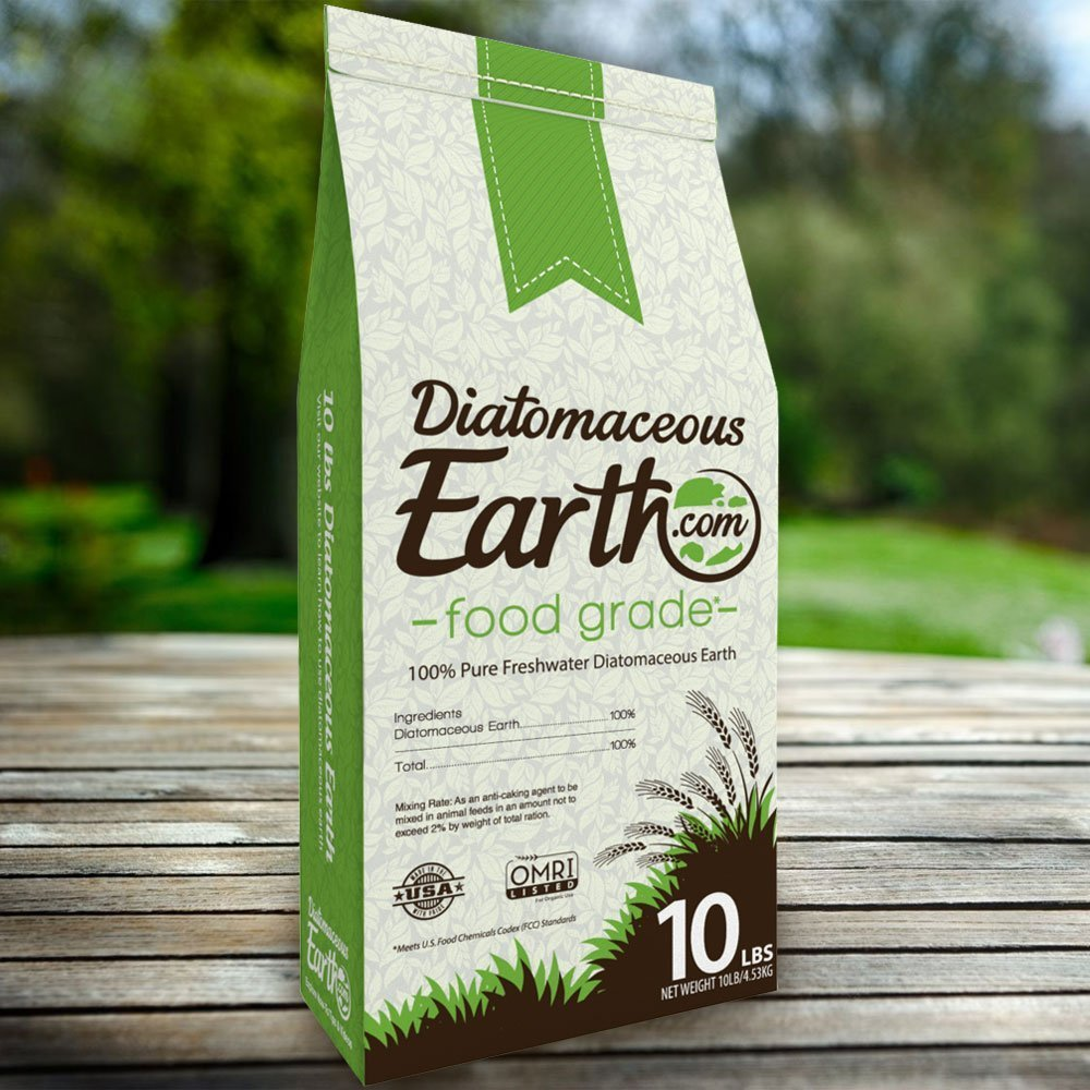 diatomaceous earth scorpions