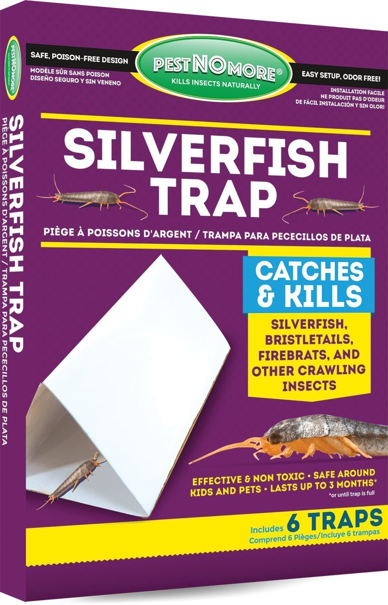 How to Get Rid of Silverfish Once and For All - Pest Hacks