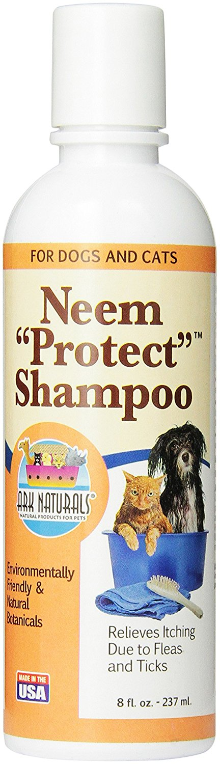 Safest flea remedy for cats