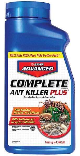 best outdoor ant killer