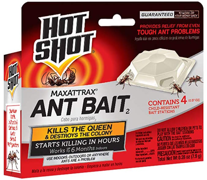 what kills ants