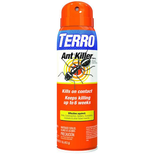 How to Get Rid of Flying Ants (and Never Deal with Them Again)