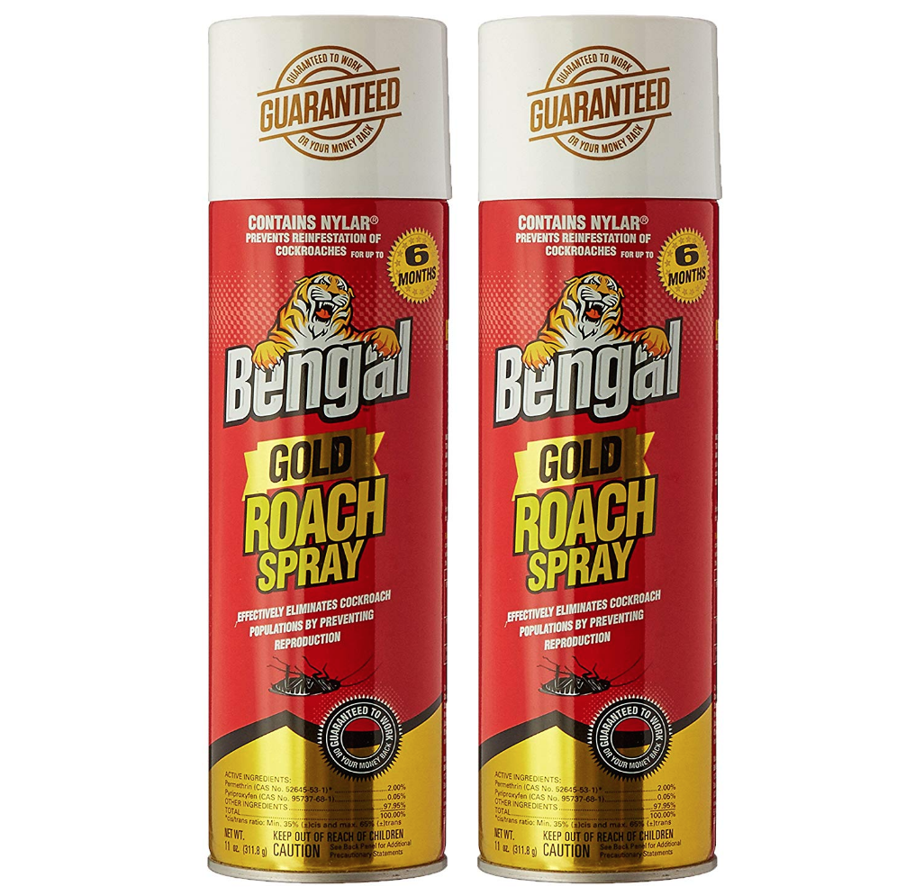 best roach spray